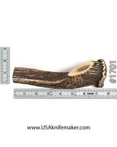 Sambar Stag Crown Stick Knife Handle Material #704