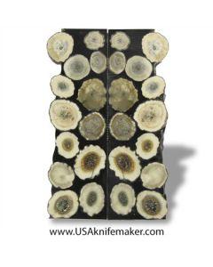 Sambar Stag Resin - Scales - #10
